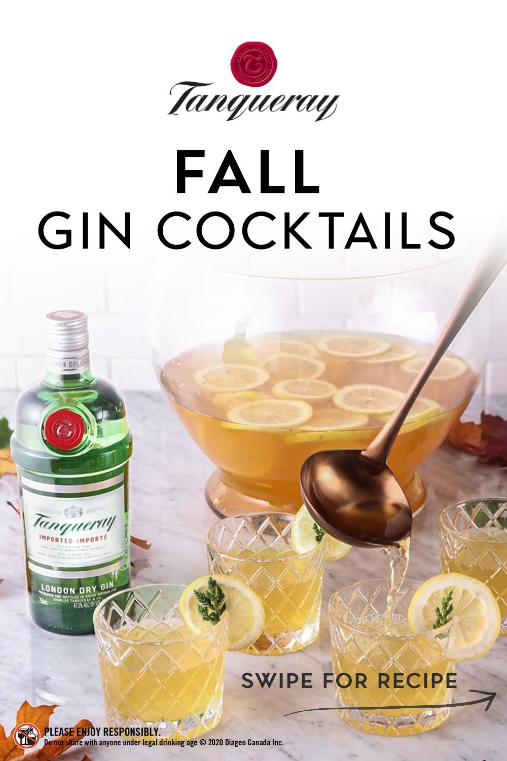 Tanqueray Fall Gin Cocktail Gin Cocktails Cocktail Drinks Recipes Gin Drink Recipes