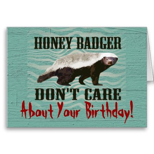 Honey Badger Don T Care Funny Birthday Card Zazzle Com Honey Badger Funny Birthday Cards Badger