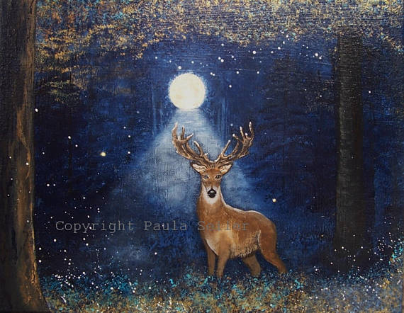 Whitetail Buck In Night Woods