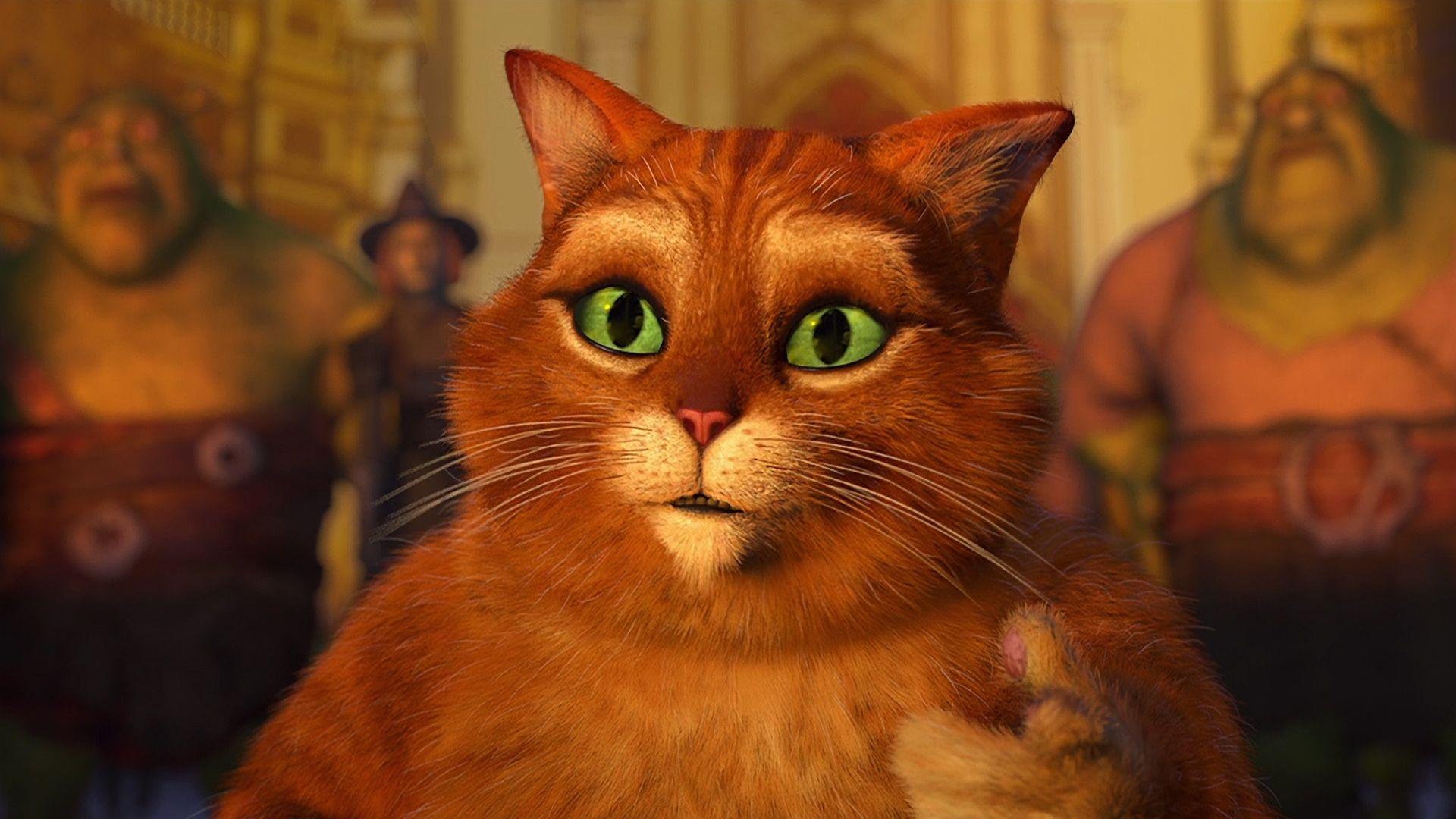Картинка кота из мультика шрека