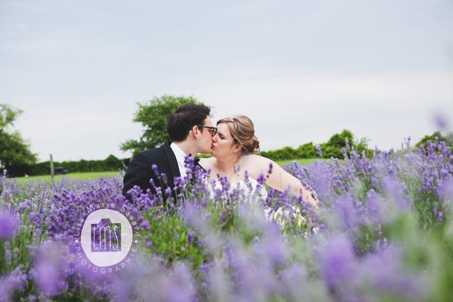 Bride and groom kissing in a lavender field. Montréal Saguenay Québec. Photo: Lisa-Marie Savard Photographie