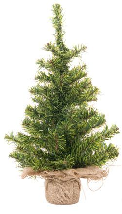 live christmas trees - Live Christmas Trees