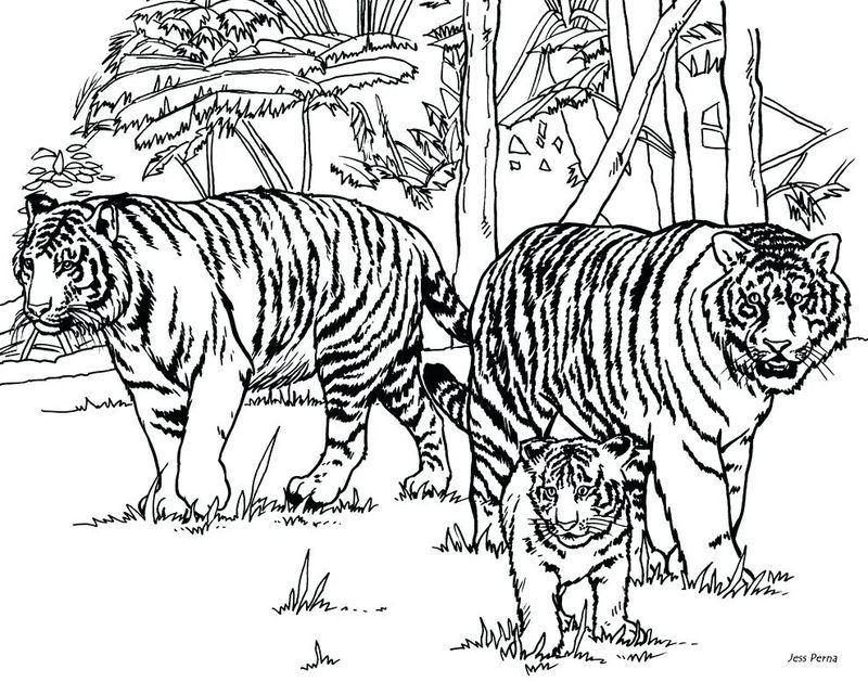Baby Tigers Coloring Pages In 2020 Animal Coloring Books Horse Coloring Pages Monster Truck Coloring Pages