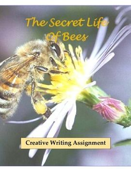 the secret life of bees pages