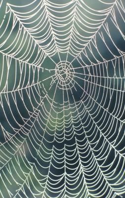 How To Make A Big Spider Web With Images Halloween Spider Web
