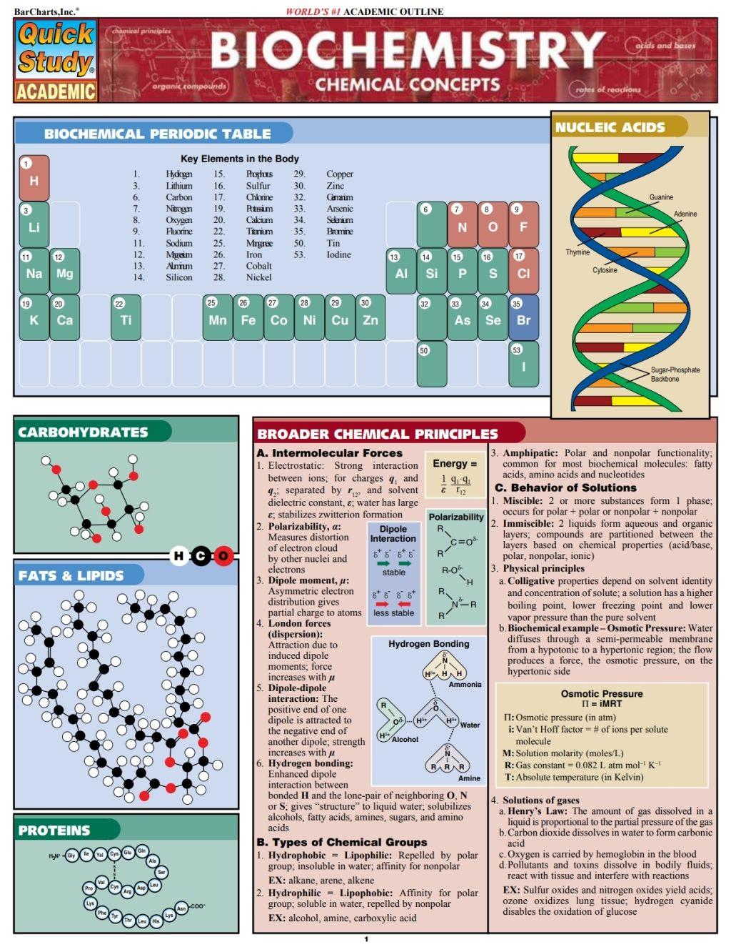Bio Lab Basics Ebook