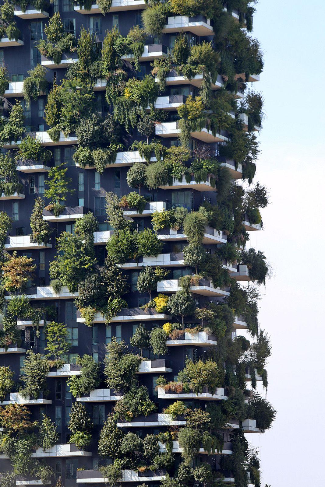 Bosco Verticale Milano Green Facade Green Architecture Futuristic Architecture