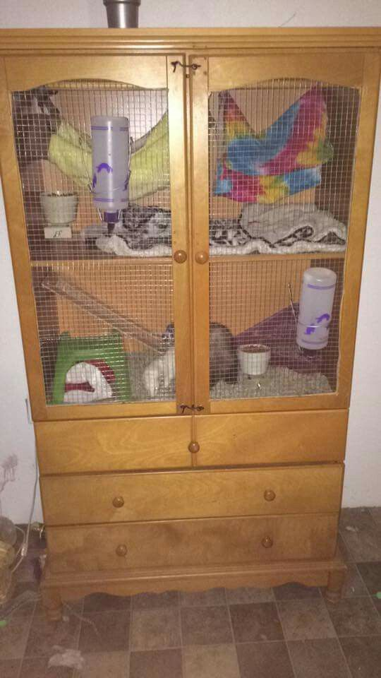 Homemade Ferret Cage From Armoire Pets Ferret Cage