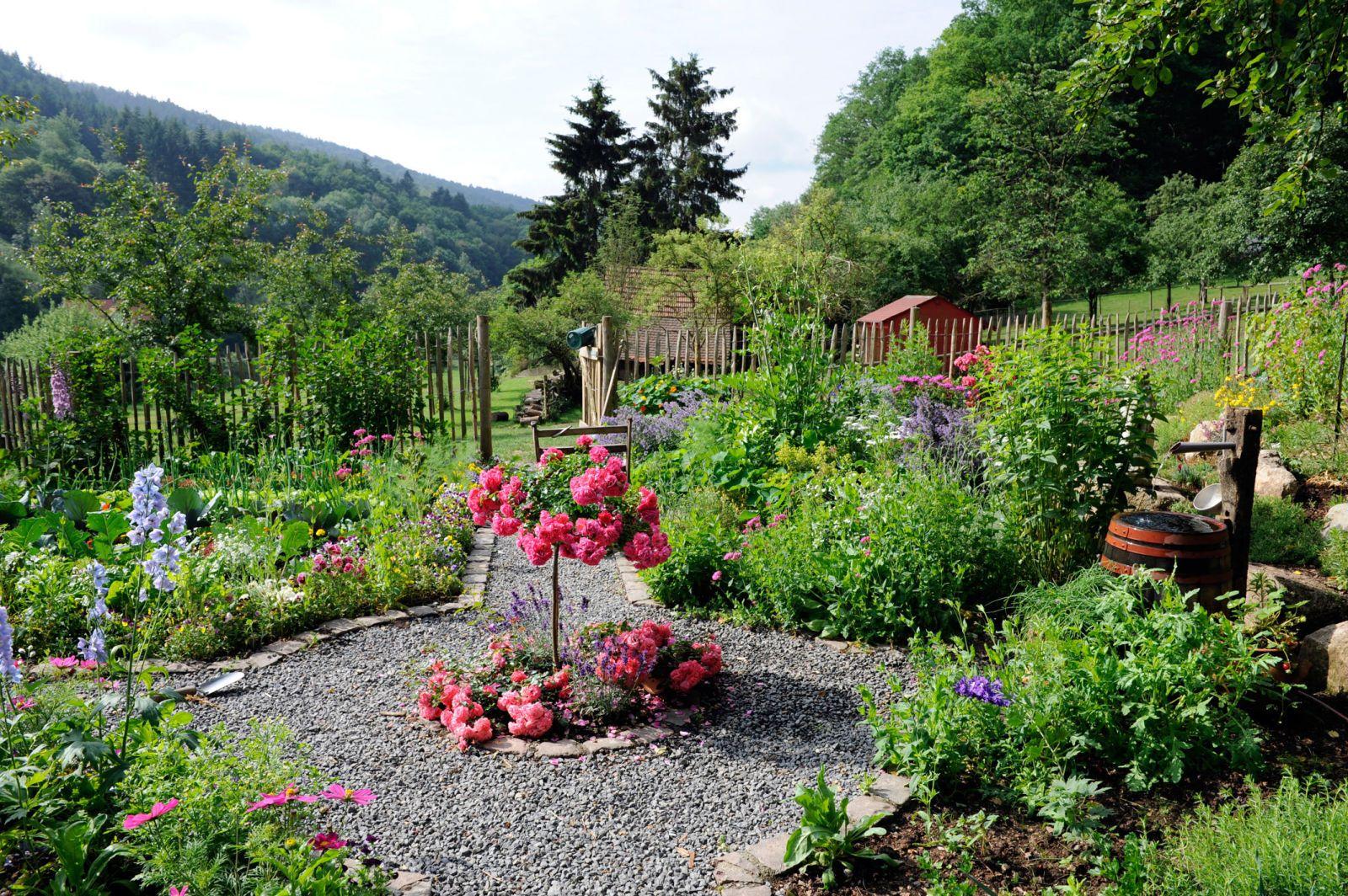 How Do I Become A Professional Garden Designer Landscape Design Deer Resistant Garden Garden Design