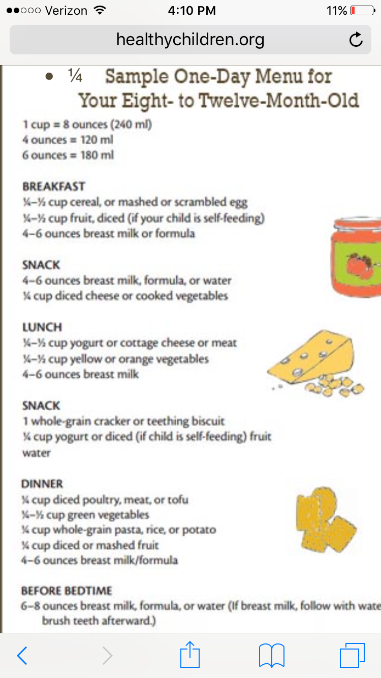 Sample daily food 8-12 months 8 Month Old Baby Food, One Month Old