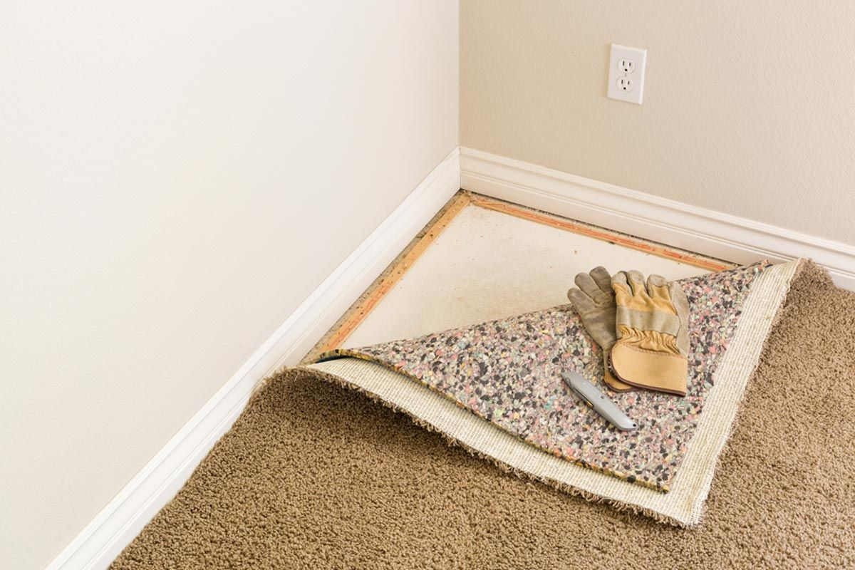 Cost To Replace Carpet In One Room Feels Free To Follow Us In 2020 Wall Carpet New Carpet Mildew Smell