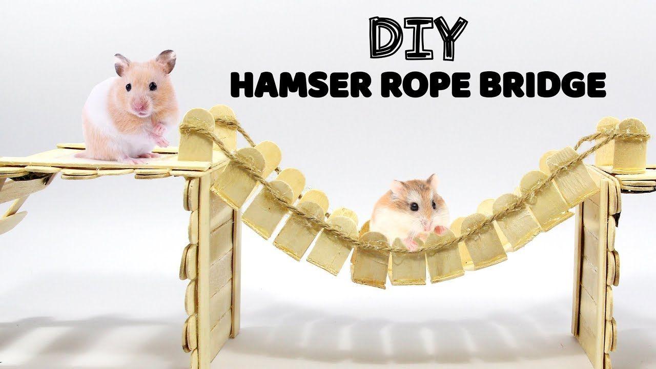 How To Make Rope Bridge For Hamster Diy Pet Toy Hamster Diy Diy Pet Toys Diy Hamster Toys
