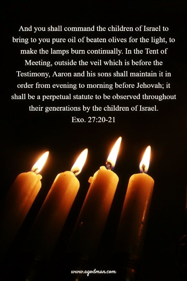 Exo. 27:20-21 And you shall command the children of Israel to bring to you pure oil of beaten olives for the light, to make the lamps burn continually. In the Tent of Meeting, outside the veil which is before the Testimony, Aaron and his sons shall maintain it in order from evening to morning before Jehovah; it shall be a perpetual statute to be observed throughout their generations by the children of Israel. Bible Verse quoted at www.agodman.com