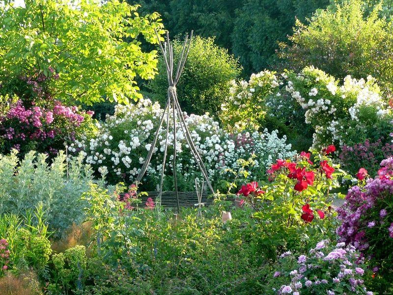 Au Jardin Jardins Jardin De Reve