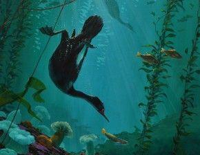 Stellar's Jay Among Alders - An original painting by Mark Hobson. oil free coast