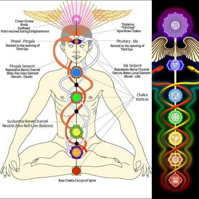 17+ What are nadis and their relationship to chakras inspirations
