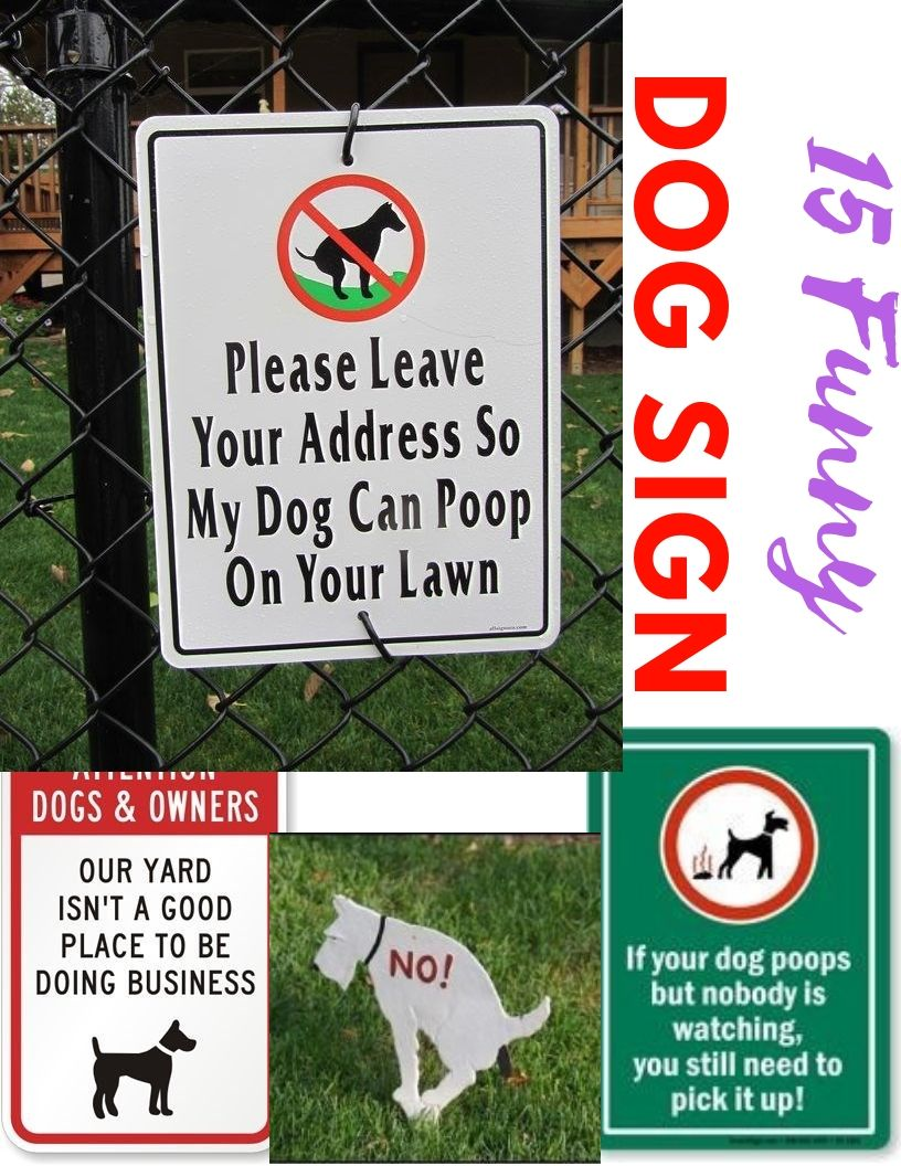 15 Funny Clean After Your Dog Signs In 2020 Dog Signs Your