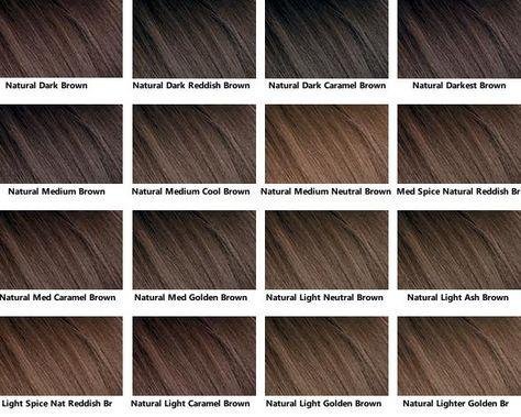 Brown hair color chart hair pinterest