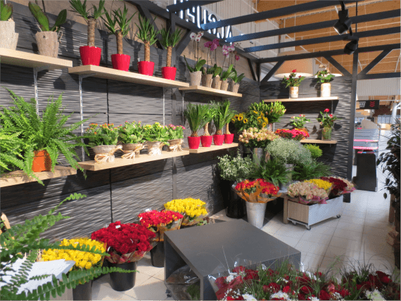 Mobiliers présentoirs pour fleurs et plantes Someva