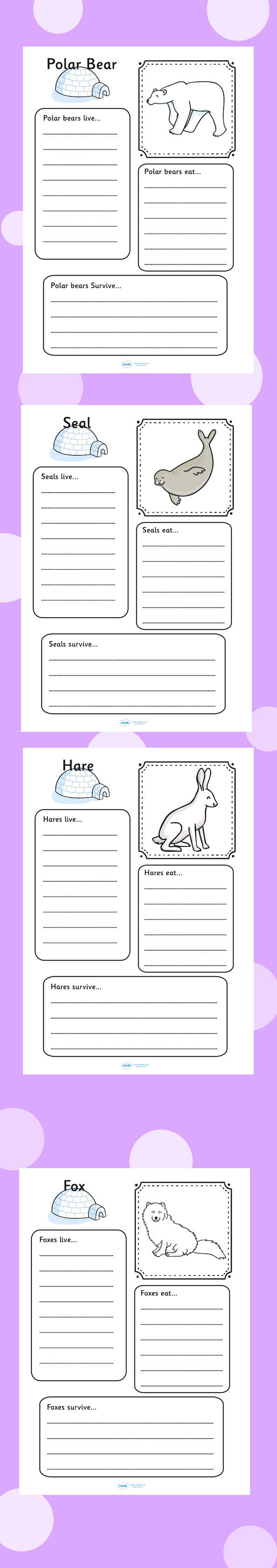 Arctic animal colour and writing worksheets. Polar, ice