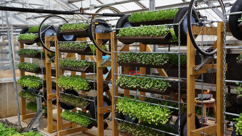 Hydroponic, Vertical Farming, Aquaponic, Urban