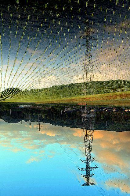 Perfect reflection on rice fields, Toyama, Japan