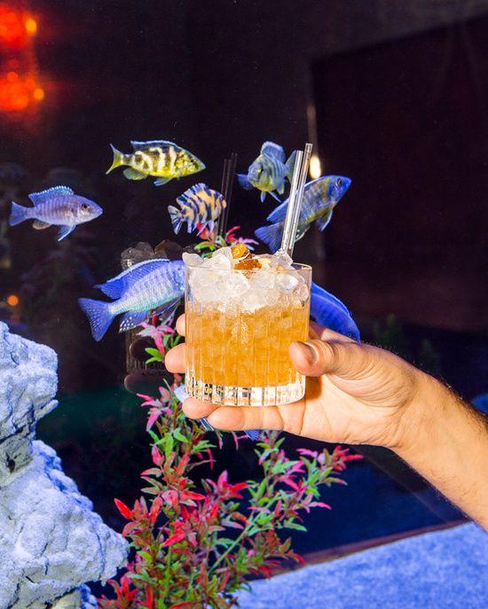 10+ Manger a l aquarium de paris trends