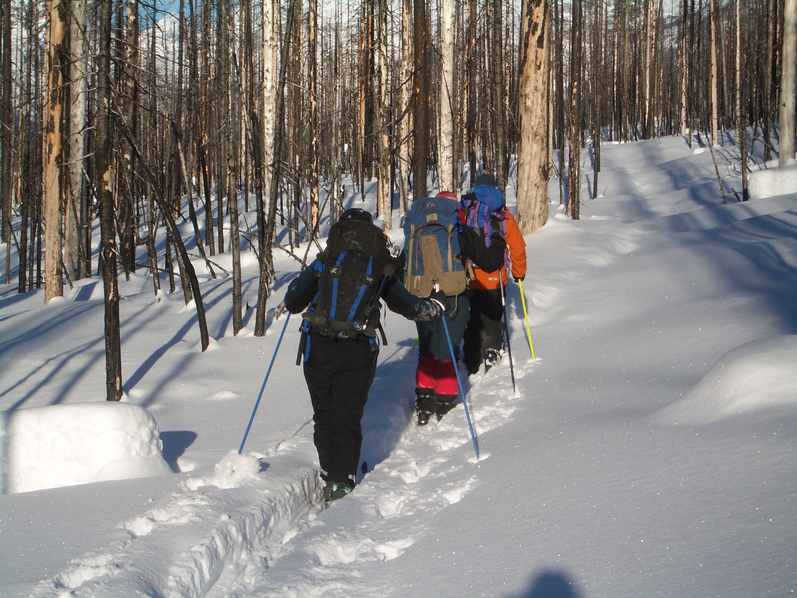 Tips and Tricks for Cold-Weather Backpacking And Winter ...