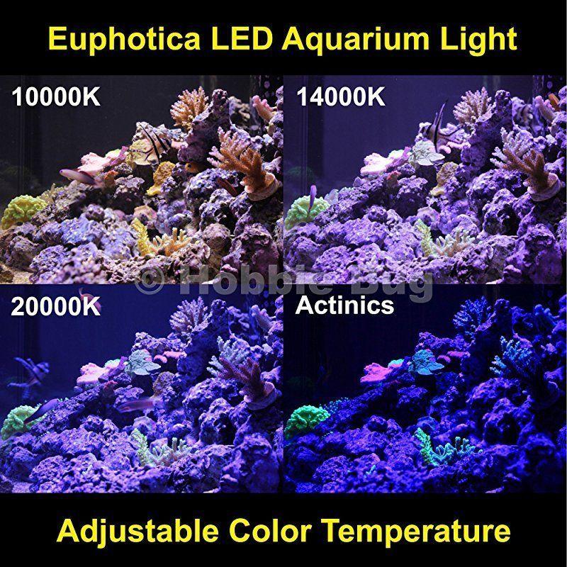 Aquarium Lighting P Aquarium Lighting Saltwater Fish Tanks Marine Aquarium