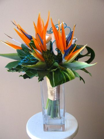 Birds Of Paradise Orange Wedding Flowers Flower