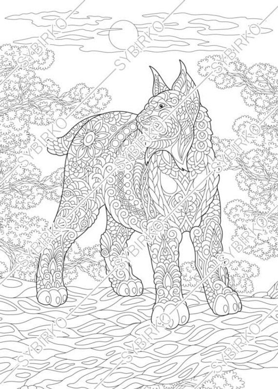 Coloring pages. Wildcat. Lynx. Bobcat. Adult coloring ...