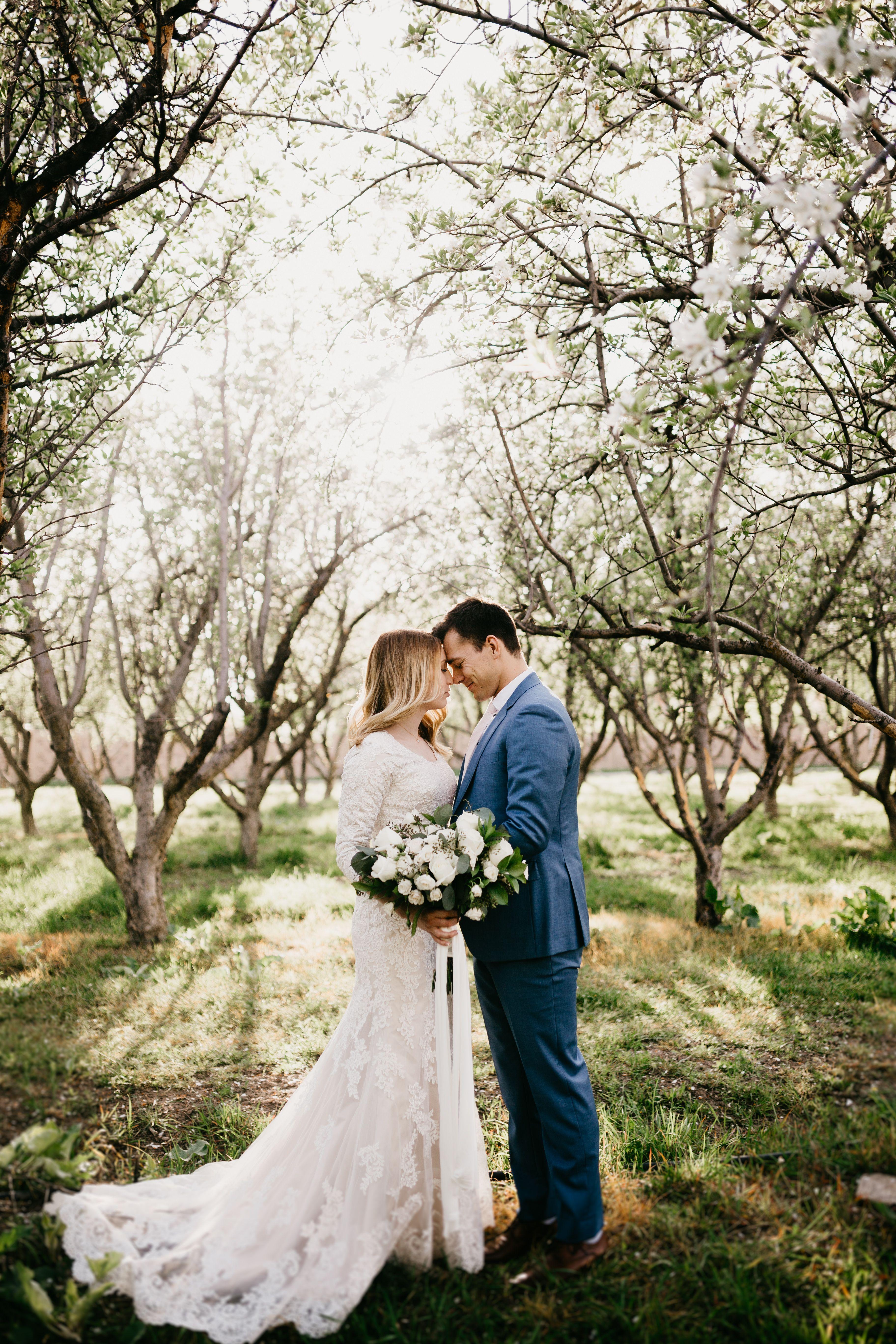 Nicole Aston Photography, summer wedding, orchard wedding, spring ...