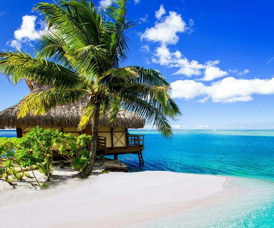 Relaxing Ocean Tropical Landscape Wallpaper Maldives Wallpaper Nature Wallpaper