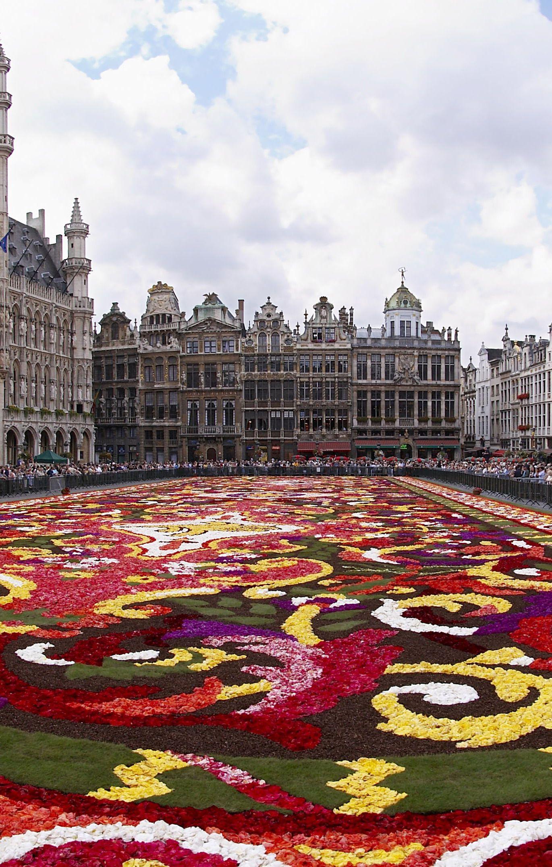 #Brussels_Flower_Carpet - #Belgium http://en.directrooms.com/hotels/subregion/2-35-231/