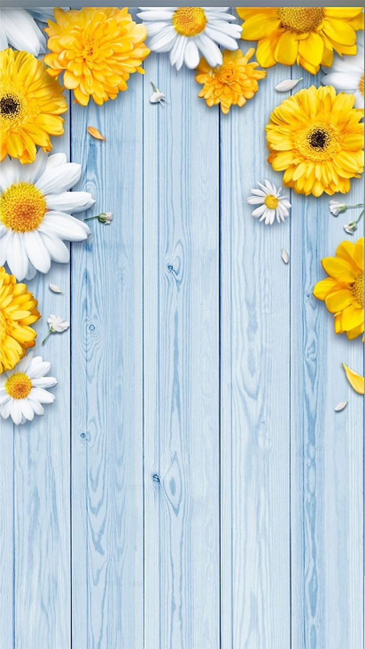 phone wallpaper yellow flowers on blue boards Flower