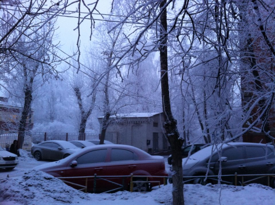 Moscow. Winter. My car.