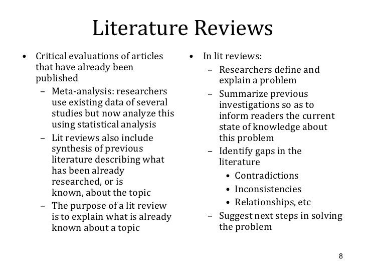 literature review example apa