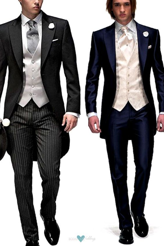 Types of Wedding Suits for Grooms | Morning suits, Grooms and Wedding