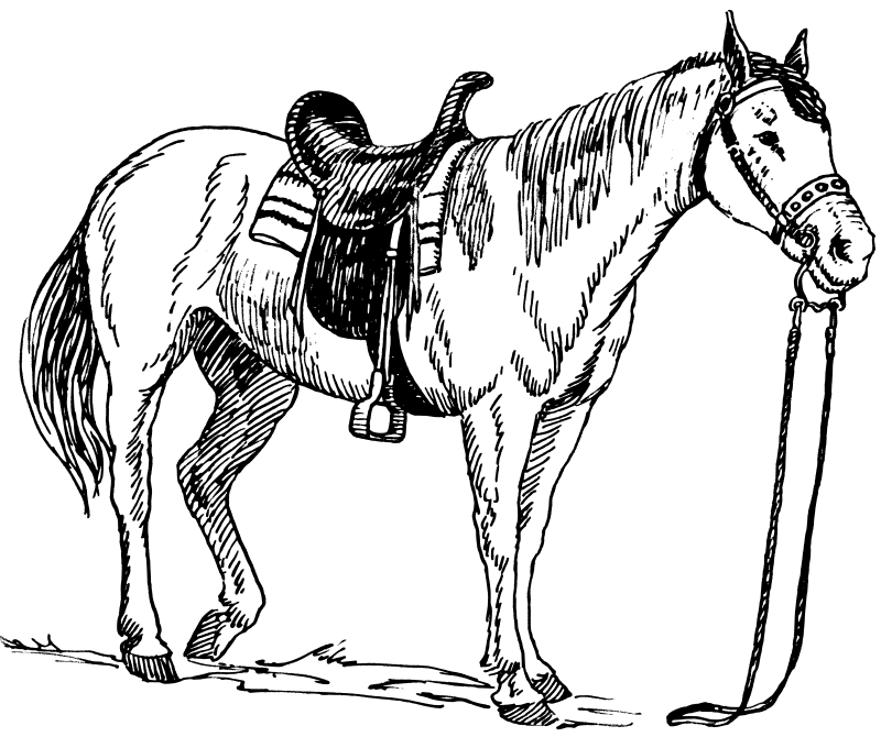 horse coloring pages 4  embroidery  Pinterest