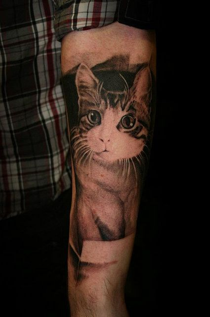 When My Cat Dies This Will Happen Because I Have The Best Cat In The World And Want To Keep Him Forever Cat Portrait Tattoos Cat Tattoo Designs Cat Tattoo