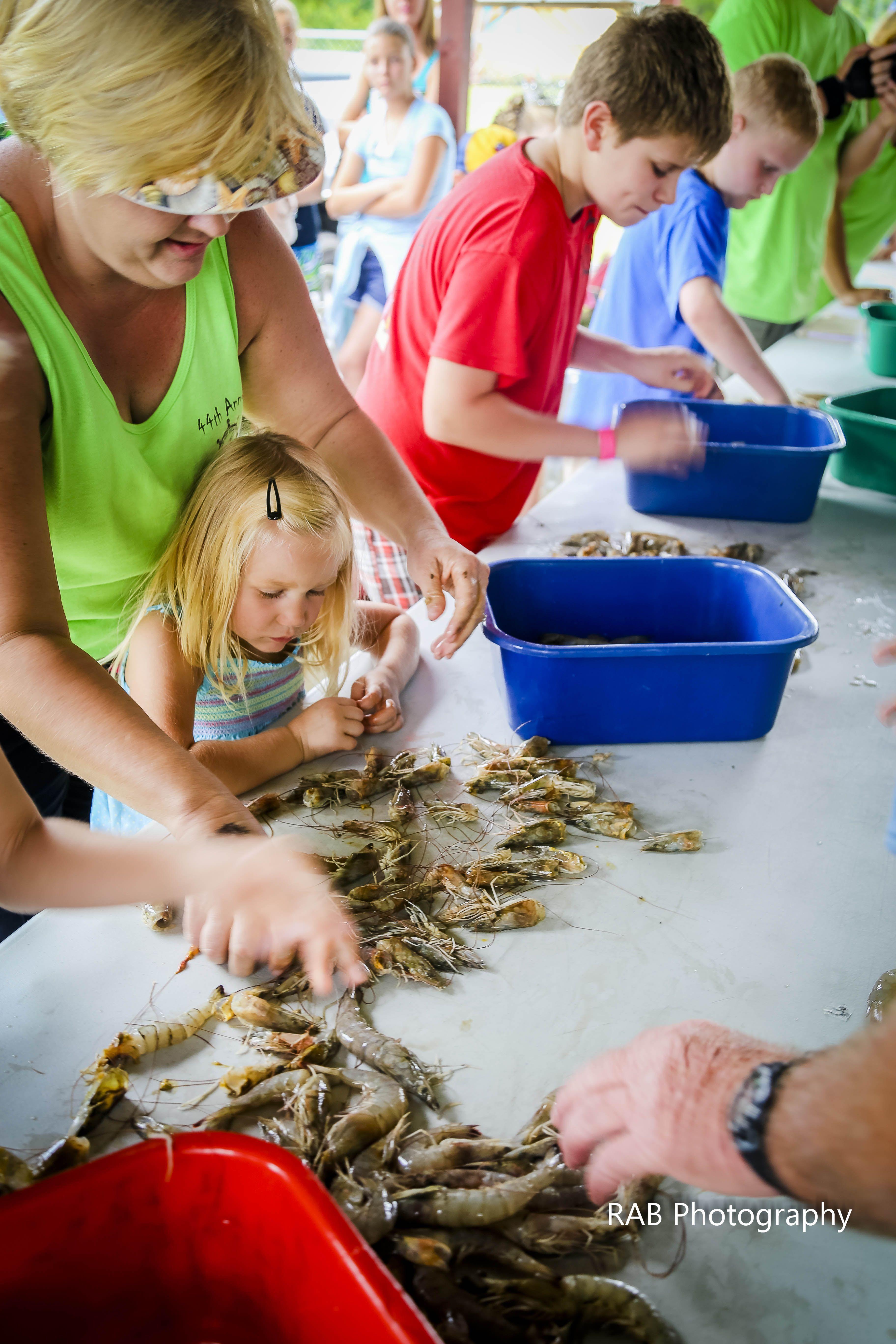 Sneads Ferry Shrimp Festival Jacksonville NC