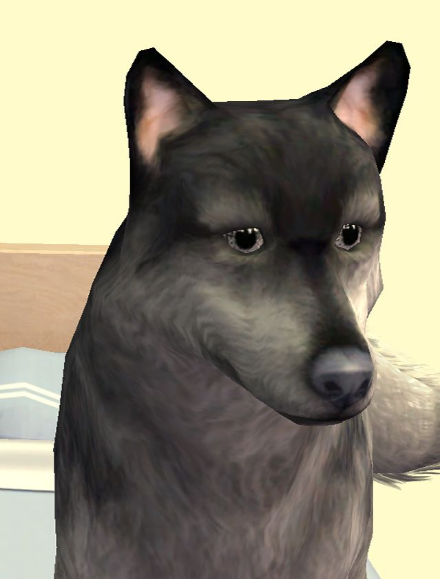 real dogs mod