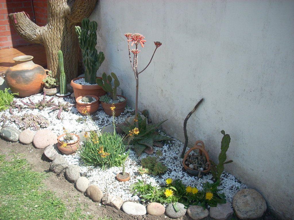 jardin pequeo jardin y terrazas pinterest jardines pequeos jardn y pequeos