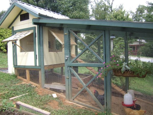 Housing On Sloped Land Chickens Backyard Building A Chicken Coop Raising Backyard Chickens