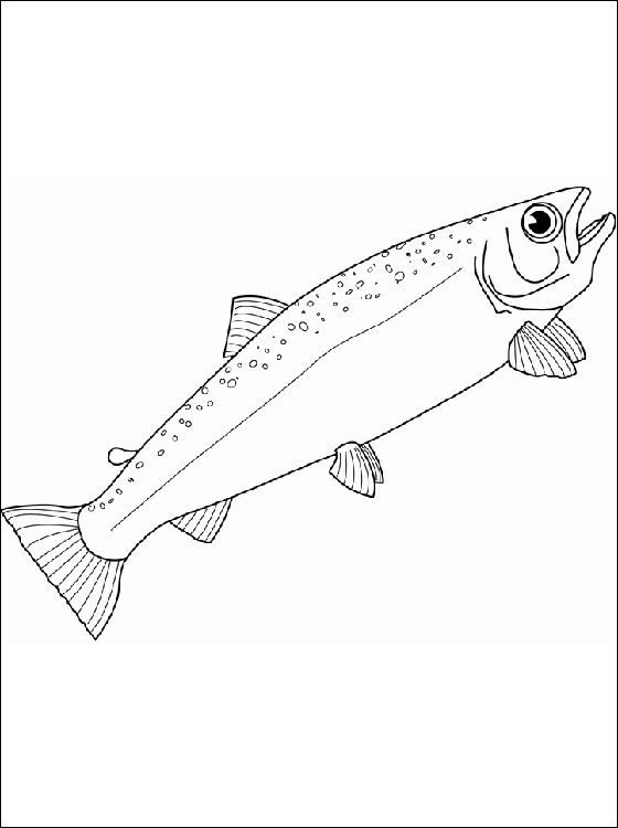 Realistic Fish Coloring Page 1 Fish Coloring Page Fish