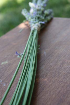 Make a lavender wand with your children this year!