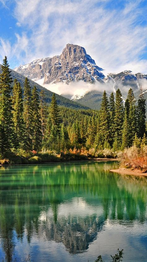 Nature Scenery Canadian Forest Lake IPhone 5 5S 5C SE Wallpaper