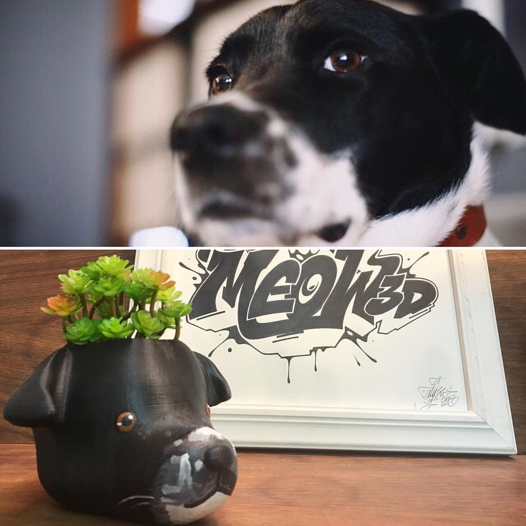 Custom Dog lover gift, Dog Planter, Mother's Day Gift