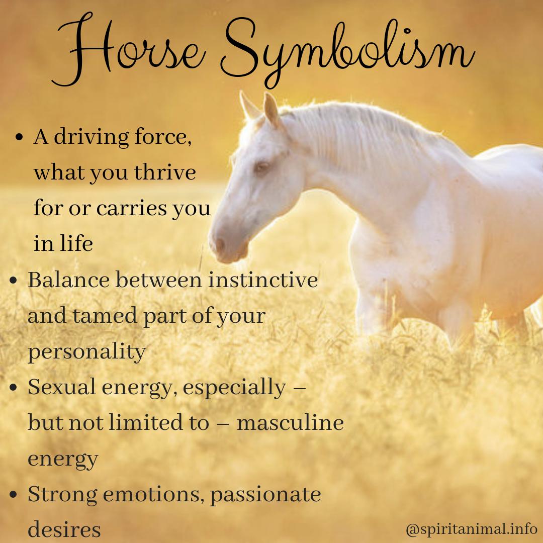 Horse Spirit Animal | Meaning | Horse spirit animal, Spirit animal meaning, Animal  meanings