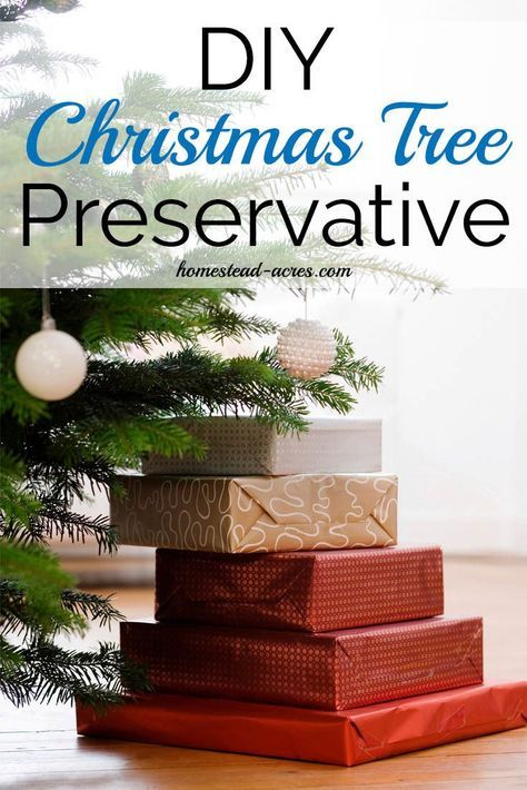 DIY #Christmas Tree preservative recipes to keep your tree beautiful this  holiday ... - How To Make Your Own Christmas Tree Preservative Safe & Non Toxic